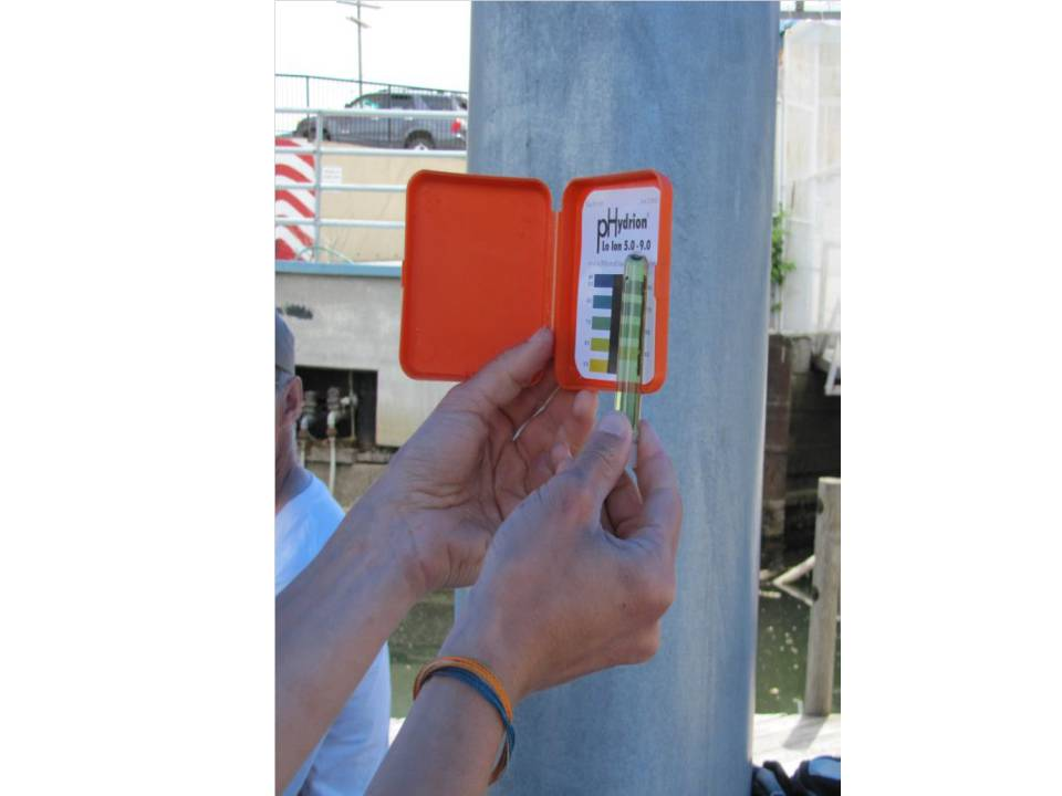 Figure 4. A data collector comparing a water sample treated with a pH indicator solution to the comparison chart.